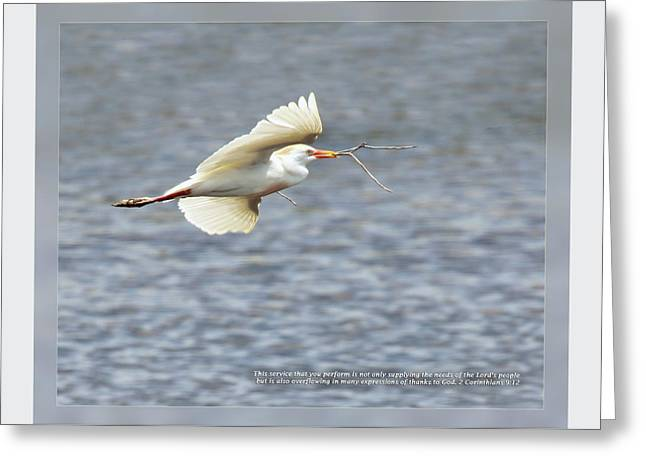 Animals Love Greeting Cards - 2 Corinthians 9 12 Greeting Card by Dawn Currie