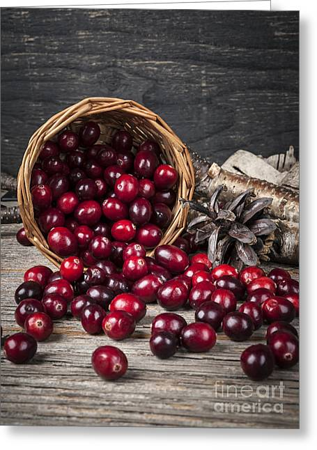 Ingredients Greeting Cards - Cranberries in basket Greeting Card by Elena Elisseeva