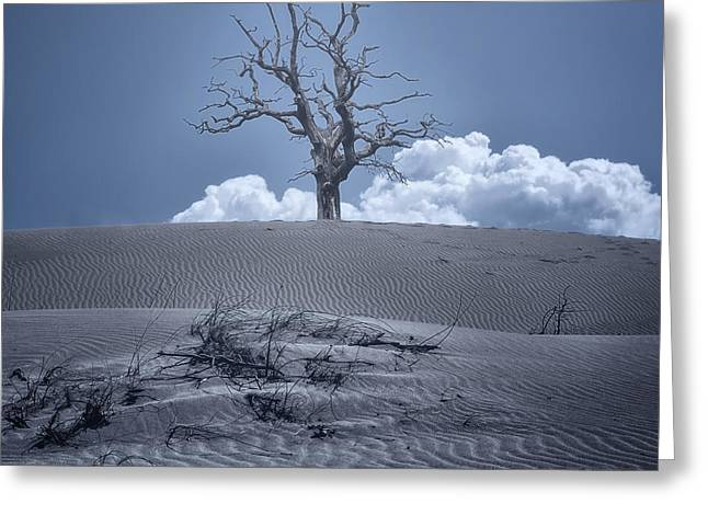Spooky Trees Greeting Cards - Dead Tree Greeting Card by Joana Kruse