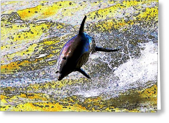 John Collins Greeting Cards - Dolphin Greeting Card by John Collins