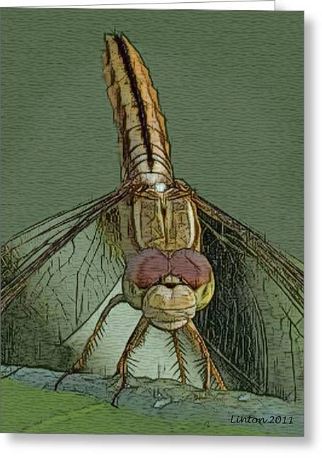 Digital Art Sketch Greeting Cards - Dragonfly 2 Greeting Card by Larry Linton