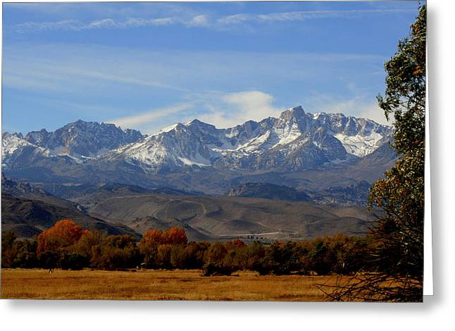 Lynn Bawden Greeting Cards - Eastern Sierras Greeting Card by Lynn Bawden
