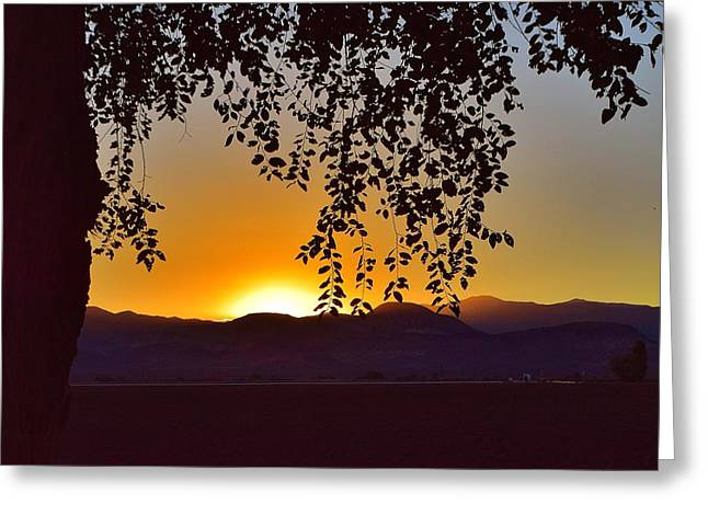 Sunset Prints Greeting Cards - End Of The Day Greeting Card by Maria Jansson