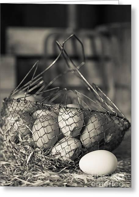 Fresh Eggs Greeting Cards - Farm Fresh Eggs Greeting Card by Edward Fielding