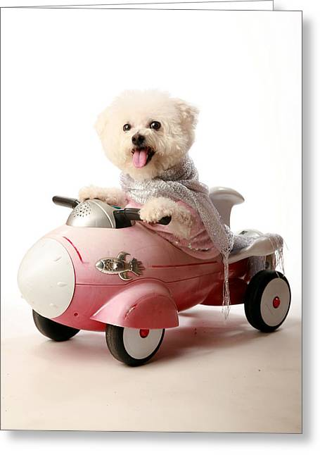 Michael Sweet Greeting Cards - Fifi loves her rocket car Greeting Card by Michael Ledray