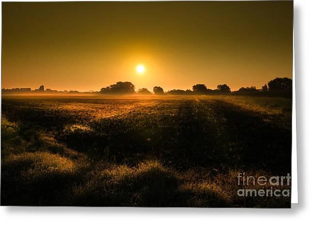 Foggy Morning Greeting Card by Franziskus Pfleghart