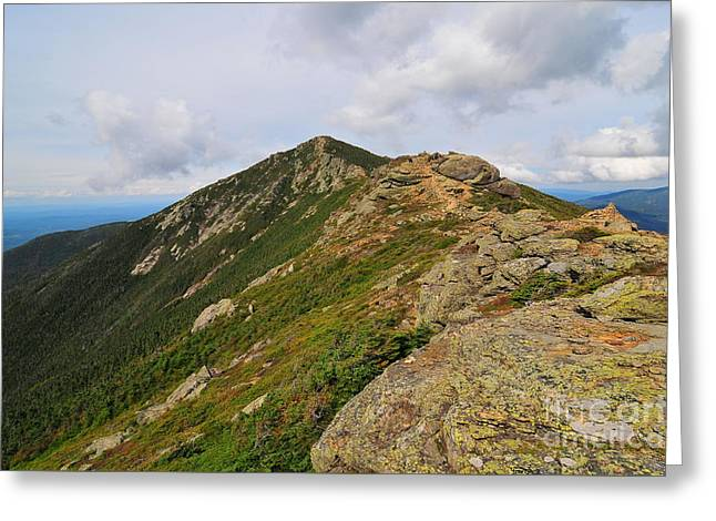 Franconia Ridge  Greeting Card by Catherine Reusch  Daley