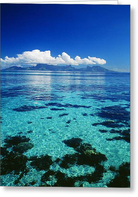 French Polynesia, Moorea Greeting Card by Dana Edmunds - Printscapes