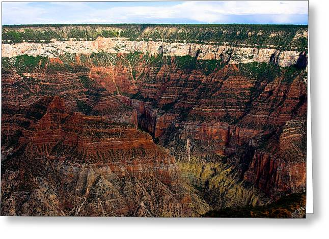 The Grand Canyon Greeting Cards - Grand Canyon  Greeting Card by James BO  Insogna