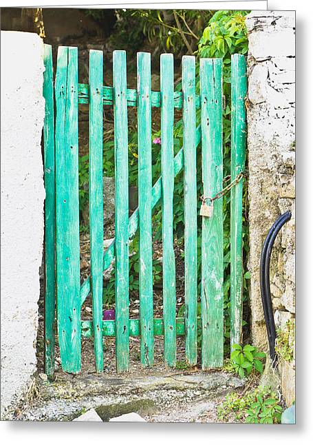 Wooden Fence Greeting Cards - Green gate Greeting Card by Tom Gowanlock