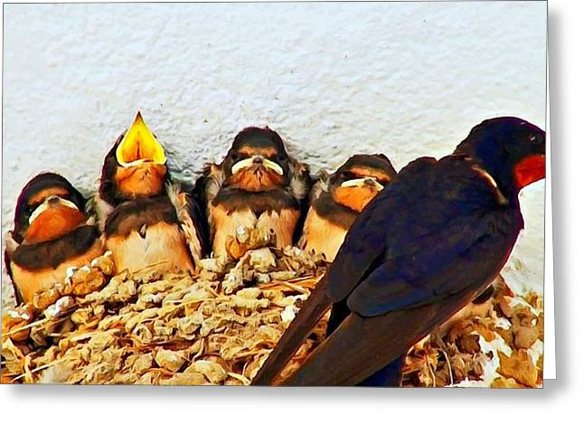 Swallow Nestlings Greeting Cards - Group of young swallows in the nest digitally painted Greeting Card by Ken Biggs