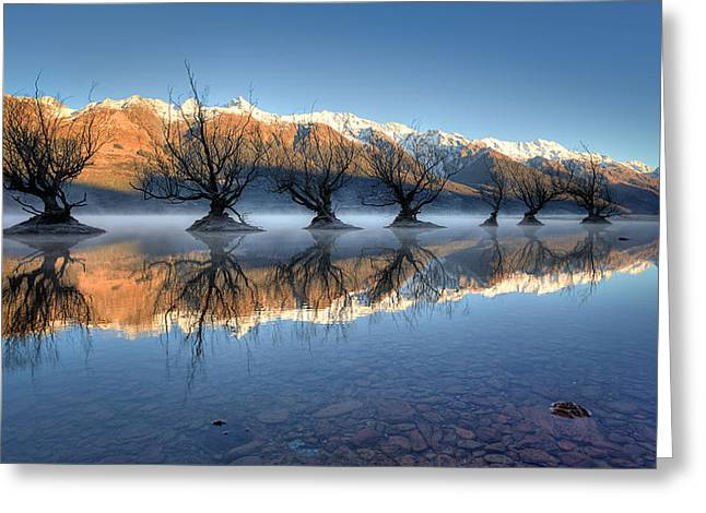 Reflecting Water Greeting Cards - Guardians Of The Lake Greeting Card by Brad Grove