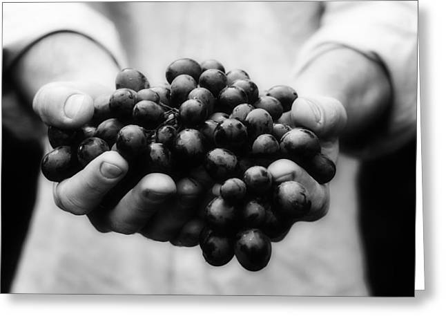 Handful Of Blueberries Greeting Card by Mountain Dreams