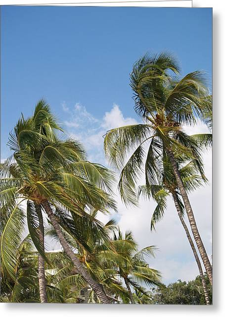 Ocean Images Greeting Cards - Hawaiian Breeze Greeting Card by Athala Carole Bruckner