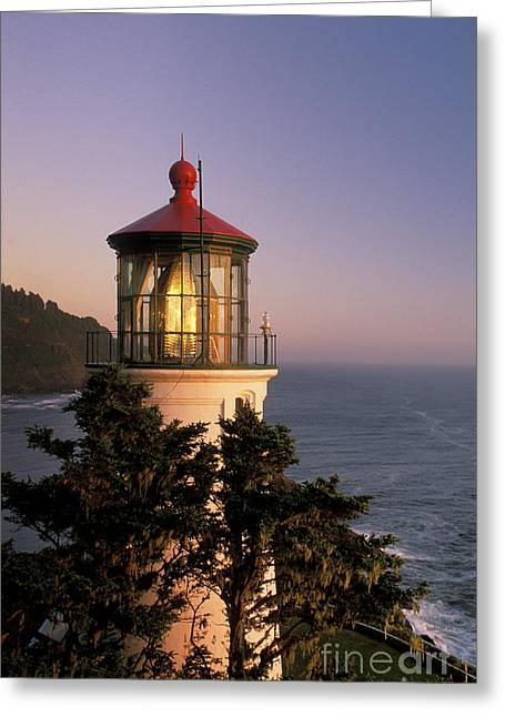 Illuminate Greeting Cards - Heceta Head Lighthouse Greeting Card by Greg Vaughn - Printscapes