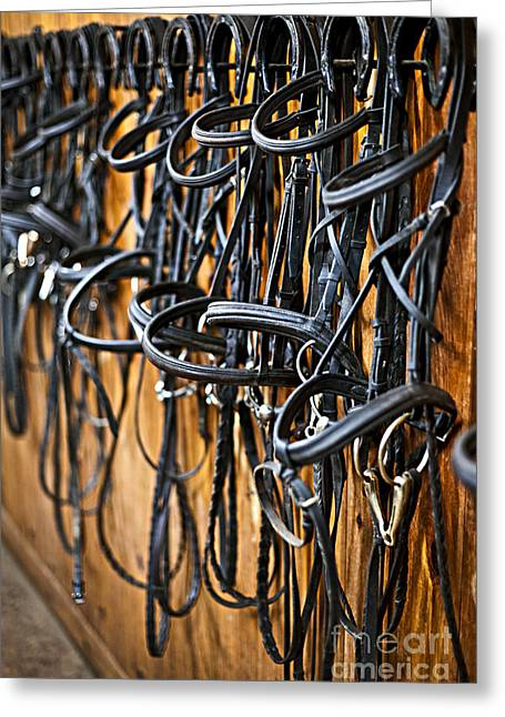 Horseshoes Greeting Cards - Horse bridles hanging in stable Greeting Card by Elena Elisseeva