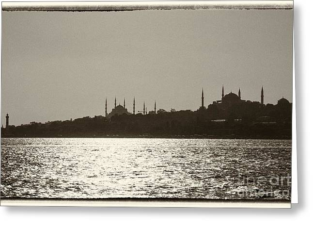 Istanbul Greeting Card by Patricia Hofmeester