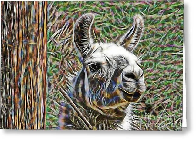 Llama Greeting Cards - Llama Greeting Card by Marvin Blaine