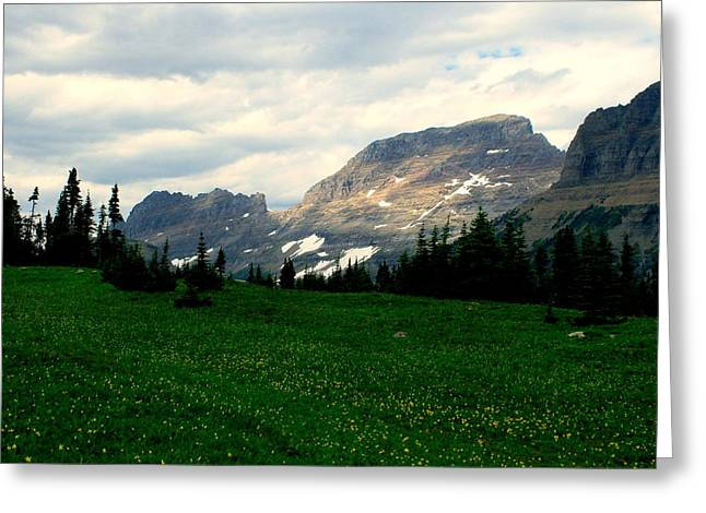Snow Scene Landscape Greeting Cards - Logans Pass Greeting Card by Tracey Vivar