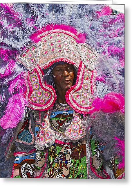 Mardi Gras Indians Greeting Card by Terry Finegan