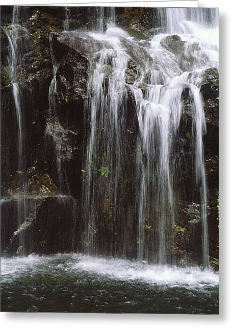 Mountainside Art Greeting Cards - Maui Waterfall Greeting Card by Himani - Printscapes