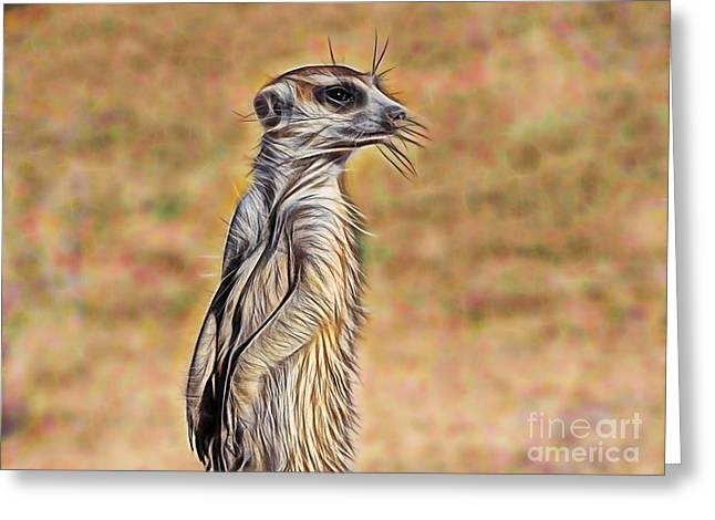 Meerkat Greeting Card by Marvin Blaine