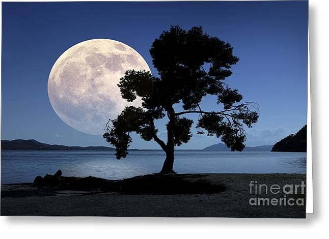 Sea Moon Full Moon Greeting Cards - Moon Rising Over The Sea Greeting Card by Detlev van Ravenswaay