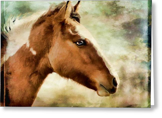 Vale Greeting Cards - Mustang Greeting Card by Athena Mckinzie