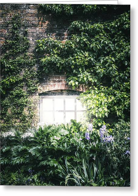 House Plants Greeting Cards - Mysterious Window Greeting Card by Joana Kruse