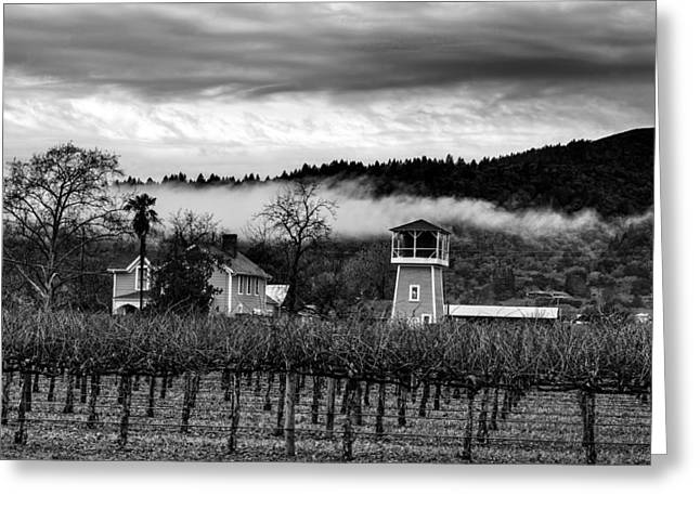Napa Valley And Vineyards Greeting Cards - Napa Valley Vineyard On A Cloudy Day Greeting Card by Mountain Dreams