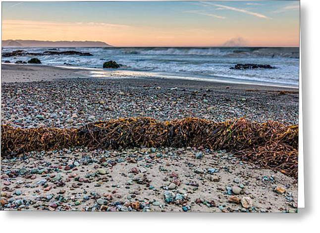 Ocean Art Photography Greeting Cards - Cayucos State Beach Flotsam Pano Greeting Card by Patti Deters