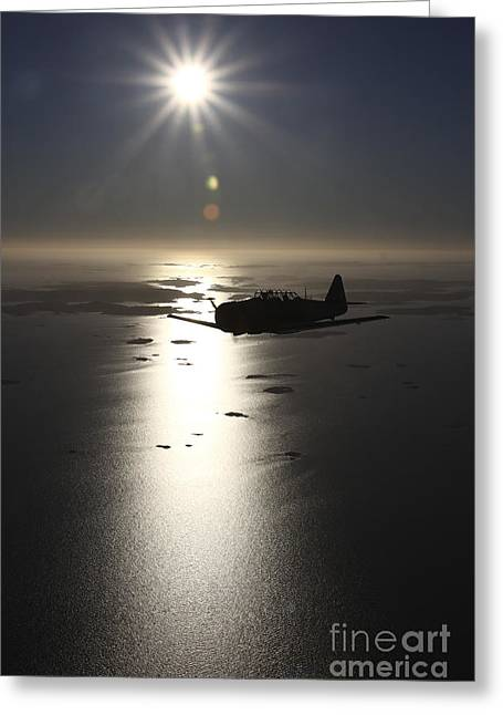 North American Aviation Greeting Cards - North American T-6 Texan Trainer Greeting Card by Daniel Karlsson