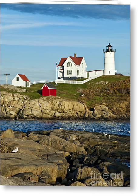 Cape Neddick Lighthouse Greeting Cards - Nubble Light Greeting Card by John Greim