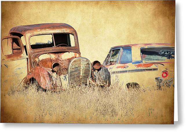 1963 Ford Greeting Cards - Old Fords Greeting Card by Steve McKinzie