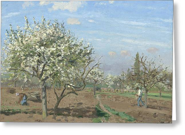 Harvest Art Greeting Cards - Orchard in Bloom Greeting Card by Camille Pissarro