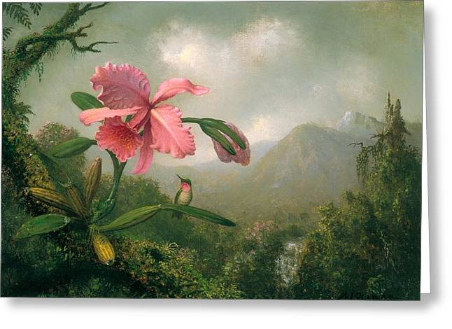 Mountain Valley Greeting Cards - Orchid And Hummingbird Near A Mountain Waterfall Greeting Card by Martin Johnson Heade