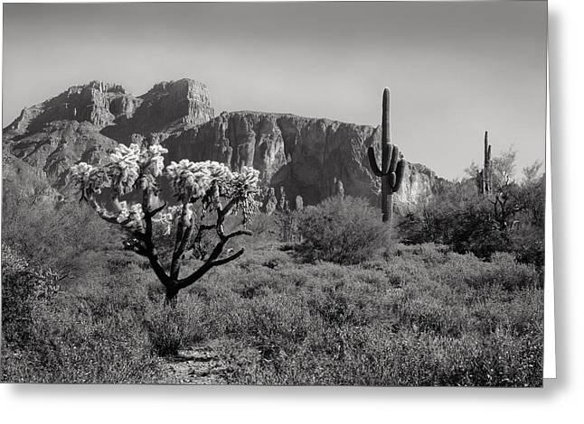 Carefree Cowboy Greeting Cards - Out Arizona Way Greeting Card by Gordon Beck
