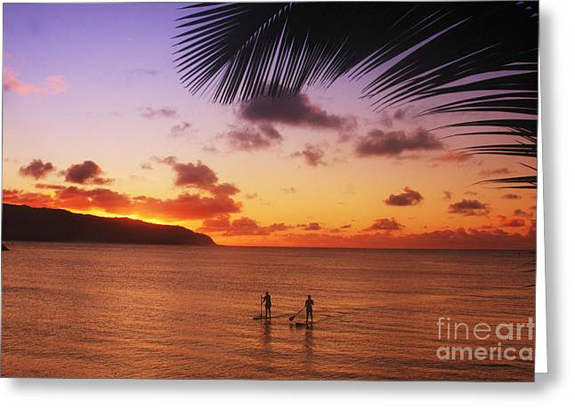 Surfing Art Greeting Cards - Paddlers at Sunset Greeting Card by Vince Cavataio - Printscapes