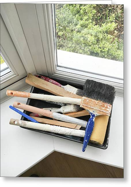 Paint Brushes Greeting Card by Tom Gowanlock