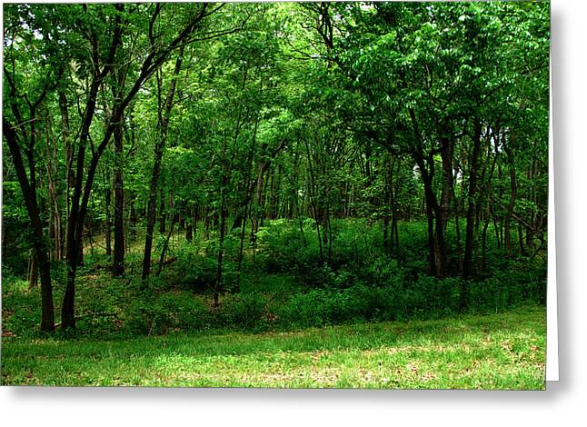 Pea Ridge Greeting Cards - Pea Ridge Greeting Card by Thea Wolff