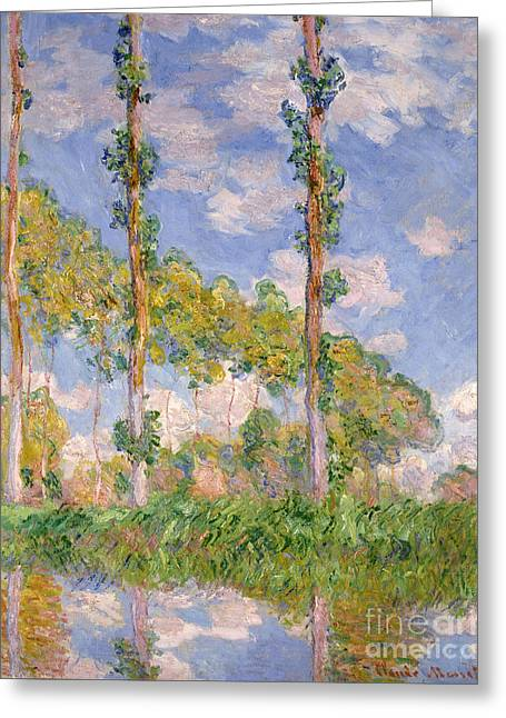 Vintage Painter Greeting Cards - Poplars in the Sun Greeting Card by Claude Monet