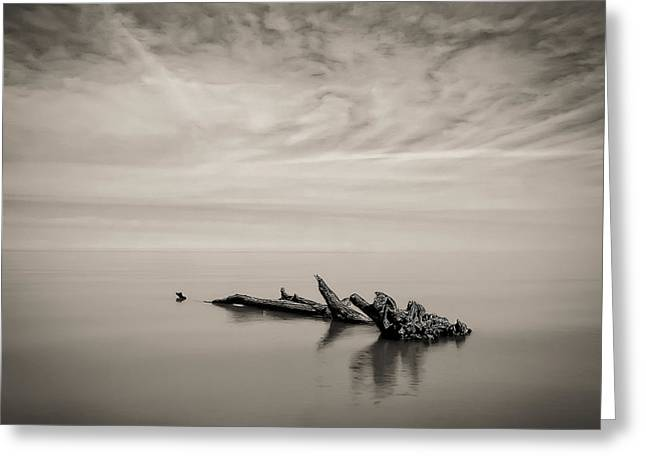 Best Ocean Photography Greeting Cards - Port Franks #1 Greeting Card by Jerry Golab