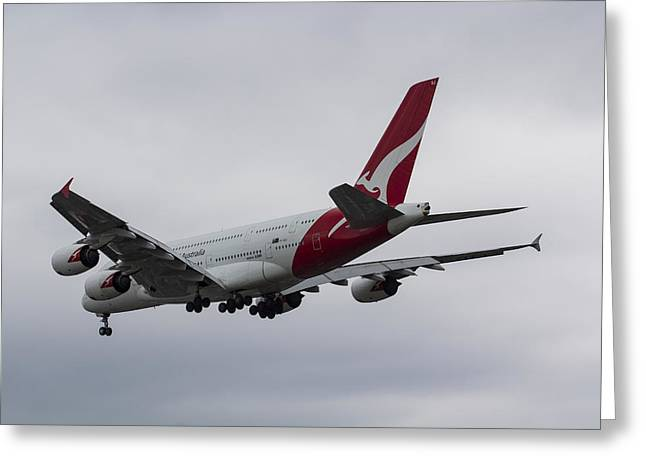 A380 Greeting Cards - Qantas Airbus A380 Greeting Card by David Pyatt
