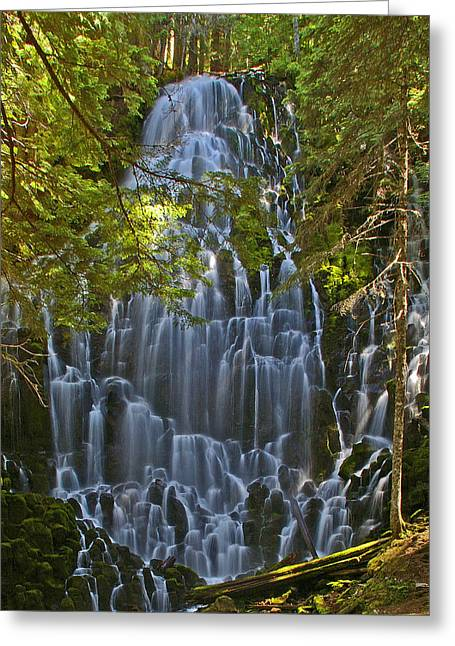 Drops Of Light Greeting Cards - Ramona Falls Oregon Greeting Card by Ulrich Burkhalter