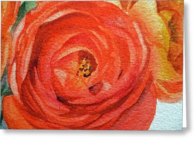 Ranunculus Close Up Greeting Card by Irina Sztukowski