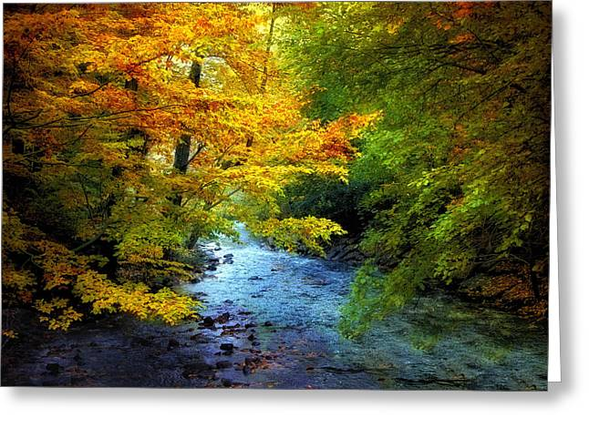 Autumn Landscape Digital Greeting Cards - River View Greeting Card by Jessica Jenney