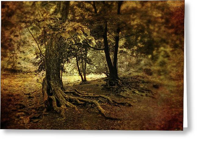 Rooted in Nature Greeting Card by Jessica Jenney