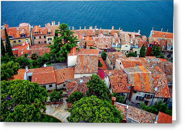 Residential Structure Greeting Cards - Rovinj - Croatia Greeting Card by Anthony Dezenzio