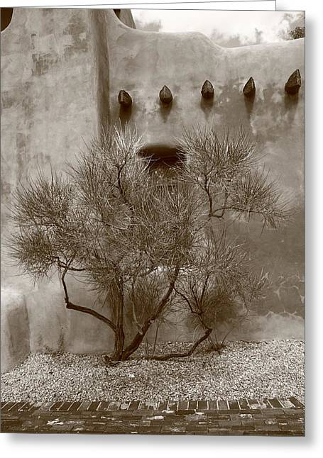 Adobe Greeting Cards - Santa Fe - Adobe Building and Tree Greeting Card by Frank Romeo