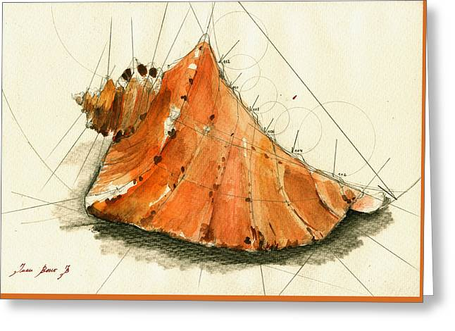 Seaside Decor Posters Greeting Cards - Seashell art painting Greeting Card by Juan  Bosco